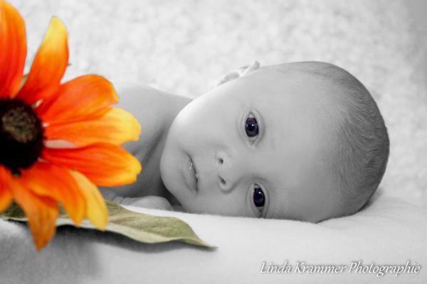 neugeborene-fotograf-119A2B993E-1495-7103-1F79-1E7B178C9039.jpg