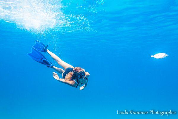 unterwasser-1589B01D573-925D-56DF-5728-78E72694D4BD.jpg