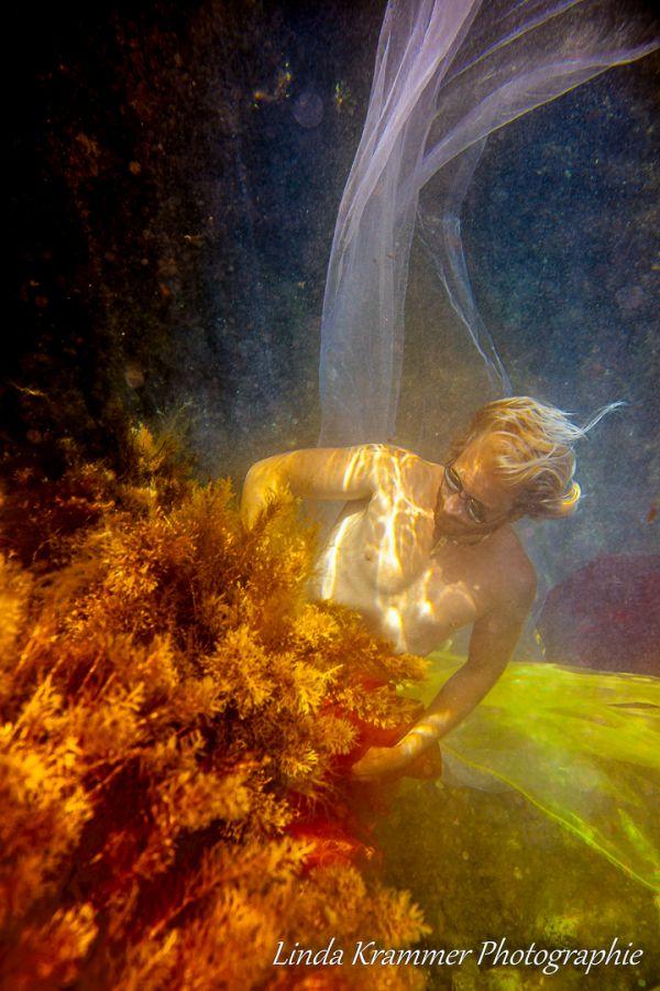 unterwasser-26794DEF405-A4DF-6D92-35D8-5425F0469E76.jpg